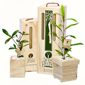 Trees Please - NZ's original tree gift company