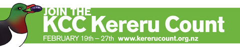 Keru Count website logo