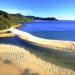 beach and bush in Golden Bay