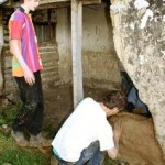 Workers restoring the cob Cookhouse at Hororata canterbury