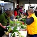 Stalls at the Riverton Organic Farmers' Market